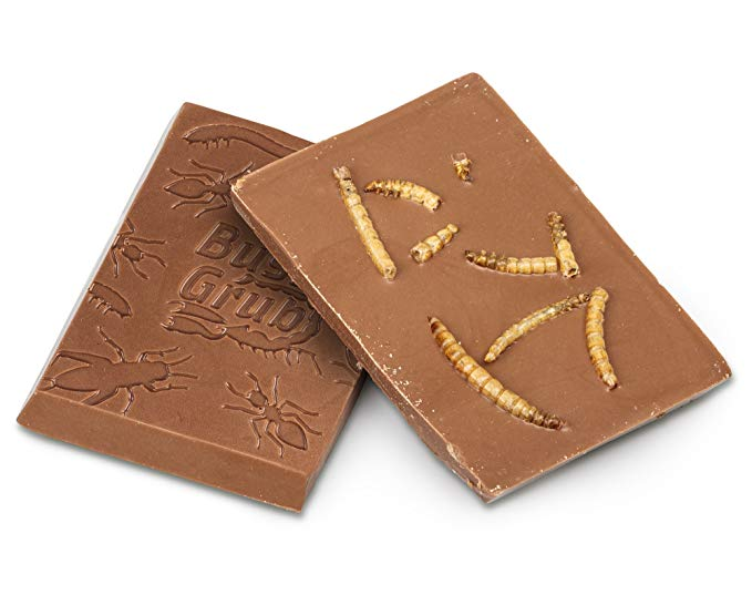 du chocolat aux insectes insolite